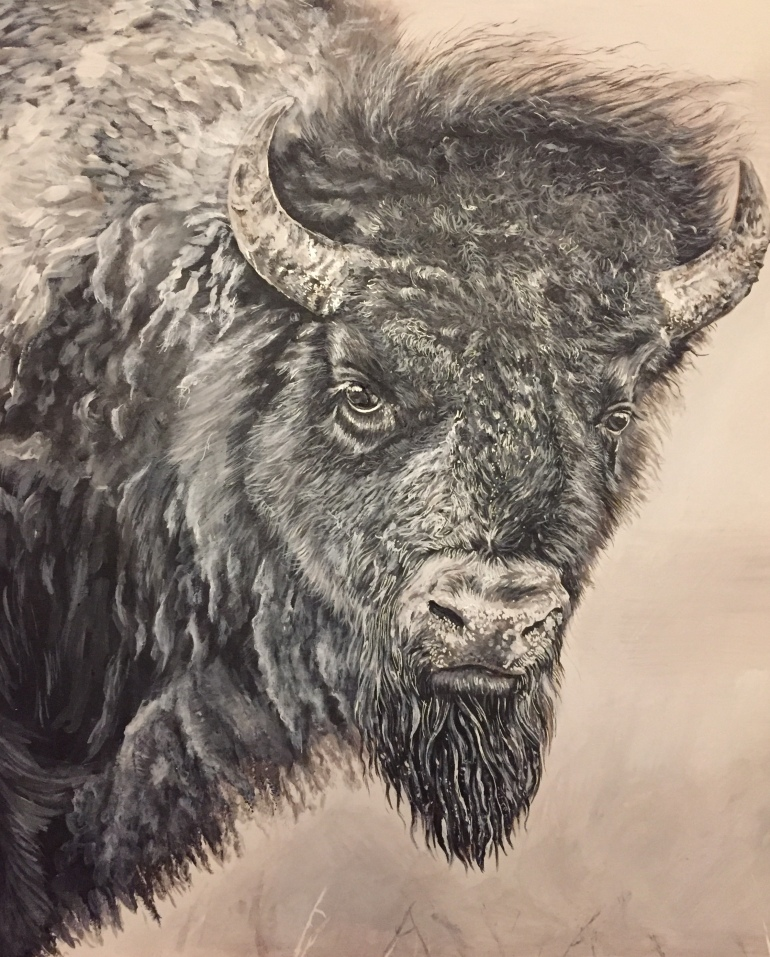 bison 2 for prints